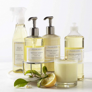 Meyer Lemon Kitchen Soap Set