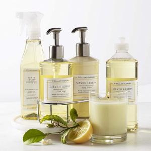 Meyer Lemon Kitchen Soap Set