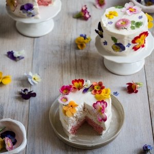 Mini ombré layer cakes with edible flowers
