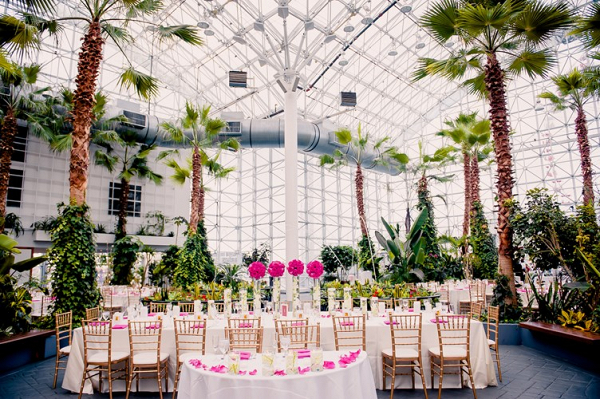 Hot pink reception