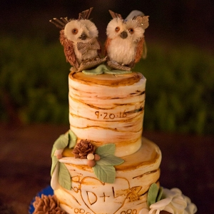 rustic wedding cake on The Budget Savvy Bride