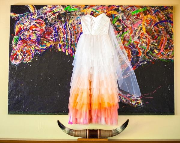Ombré Wedding Dress   Photo by Phillip Van Nostrand