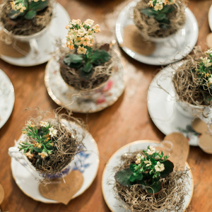 Plant favors from The Budget Savvy Bride