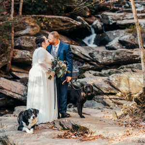 Tennessee wedding portrait with dogs