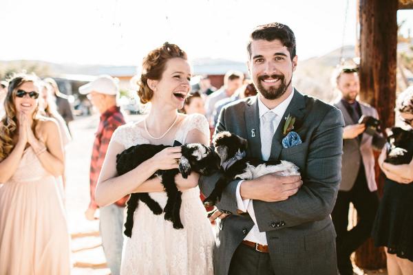 Wedding Photo with Baby GoatsWedding Photo with Baby Goats