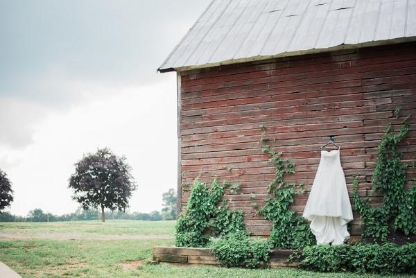 Wedding Dress Shot on A Vineyard