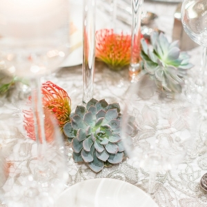 Modern Arizona Desert Wedding with Vibrant Hues