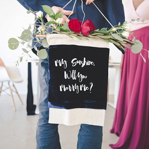 DIY velvet wedding proposal banner