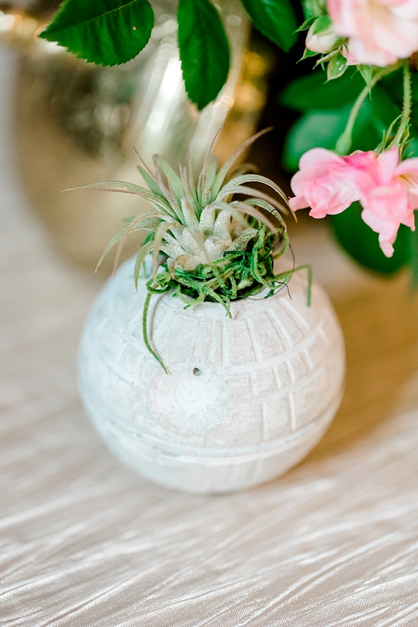 Star Wars Death Star Air Plant Vase