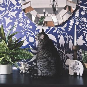 Modern Peel and Stick Wallpaper