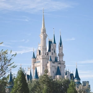 Walt Disney World Honeymoon