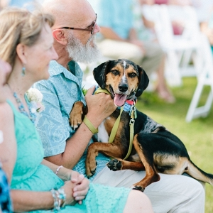 Outer Banks wedding with dog