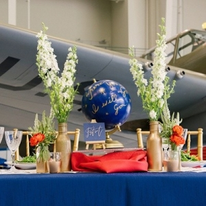 Airplane and globe wedding ideas