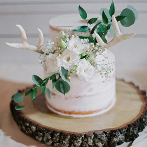 Rustic Wedding Cake with Antlers