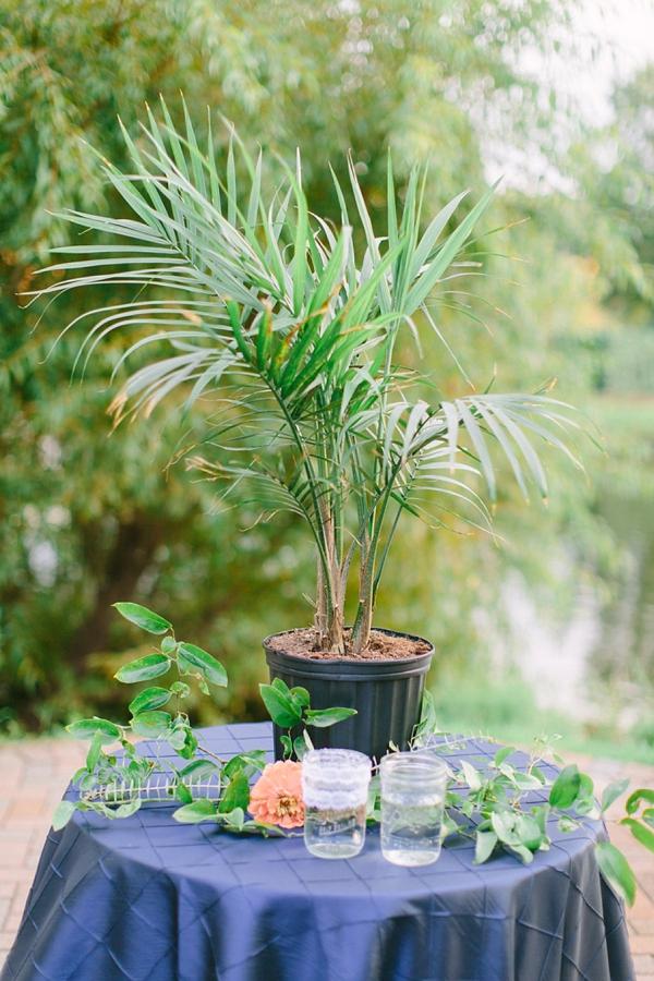 Palm tree watering ceremony