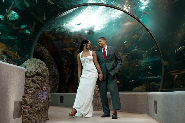 Husband and wife in aquarium tunnel