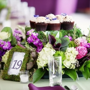 Edible centerpiece with cupcakes