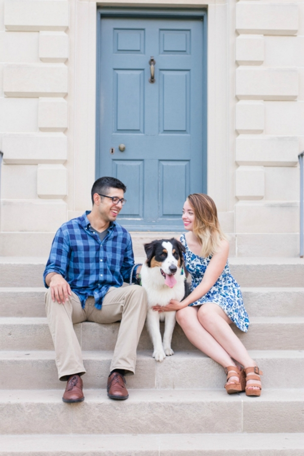 Blue Door Background on Outdoor Stairs with Dog