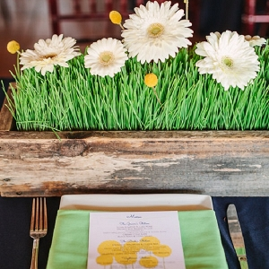 White daisy and wheat grass centerpiece