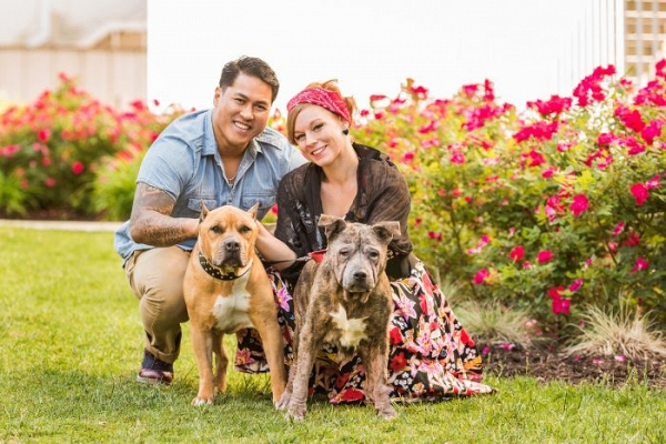 Colorful Northern Virginia engagement session with dogs