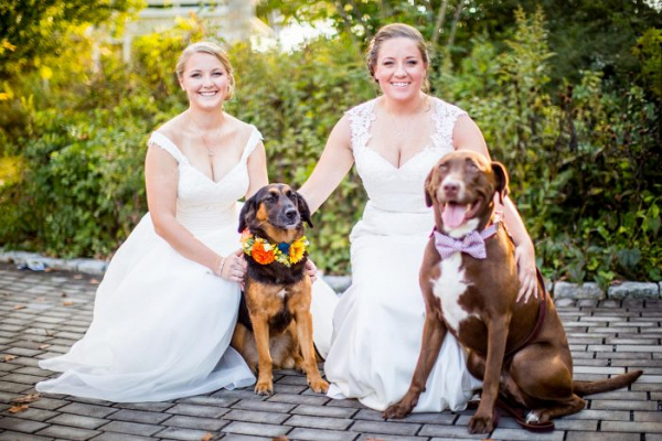 Brides with their pups