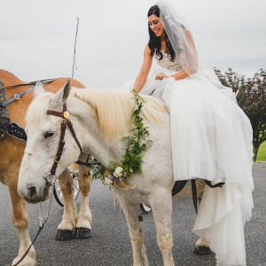 ceremony horse and carriage bride